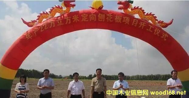 横县新威林年产22万立方米定向刨花板项目开工