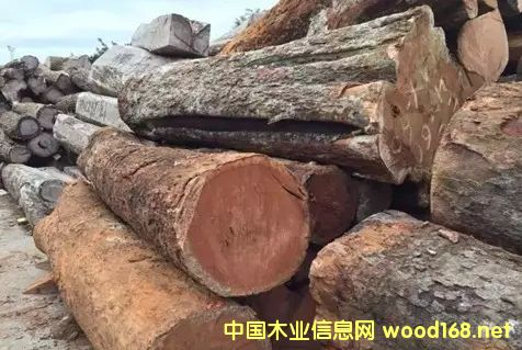 木材市场最火的材种介绍--小巴花