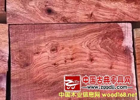 小巴花或成2016木材市场热门材种