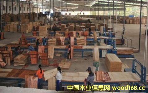 印度胶合板需求强劲,供应不足 给中国人造板企业带来新生机