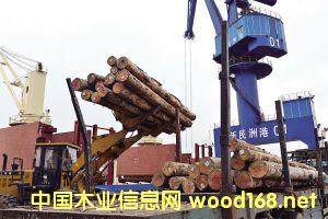 新民洲港:打造中国木材产业第一港