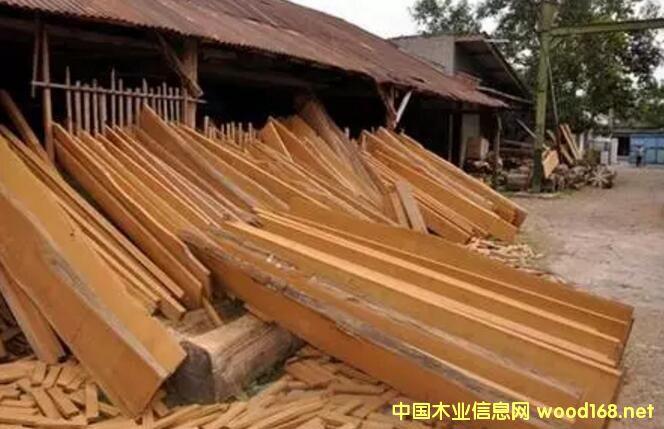 柚木市场深度分析报告:销量多年平稳 无惧木材市场危机