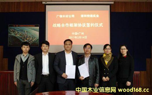 深圳特速实业与广物木材达成战略合作 助推木材产业快速发展