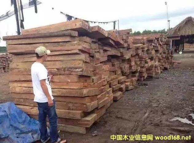 花梨木明年将无木可做,红木市场蝴蝶效应开始!