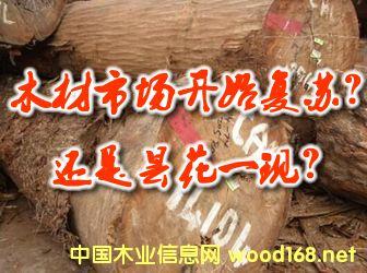 木材市场开始复苏?还是昙花一现?