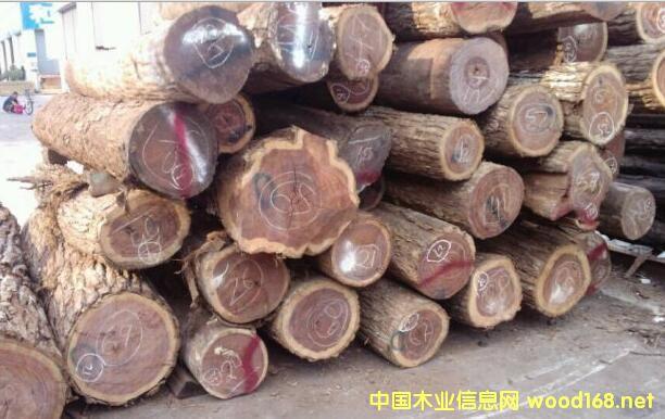 木材市场深度观察:阔变豆(南美白酸枝)价格腰斩遭遇史上最冷行