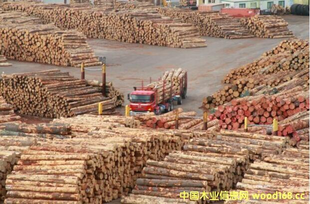 新西兰木材出口仍居全球针叶材市场第一大国