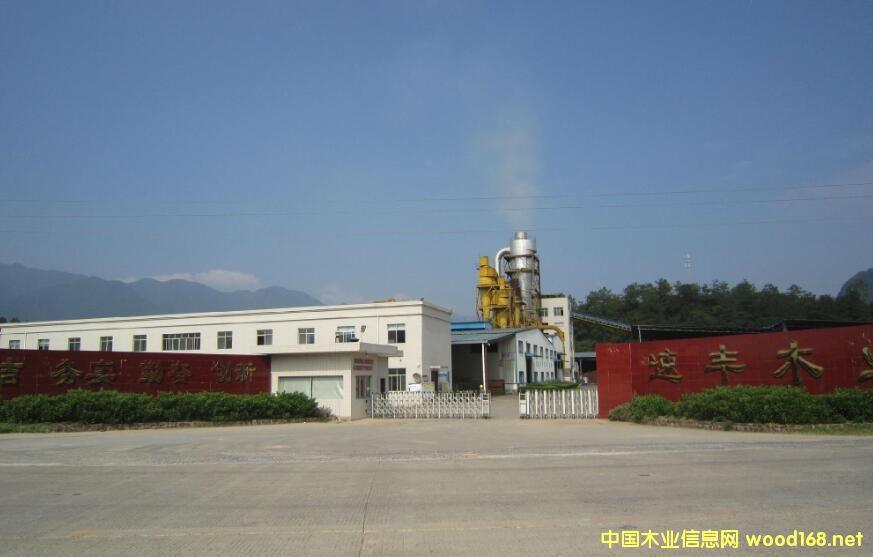 纤维板生产企业贺州速丰木业获批登陆新三板