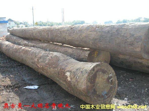 木材树种详解--奥古曼  俗称非洲红胡桃、加蓬榄