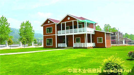 栋梁木业,大手笔发力木结构建筑产业