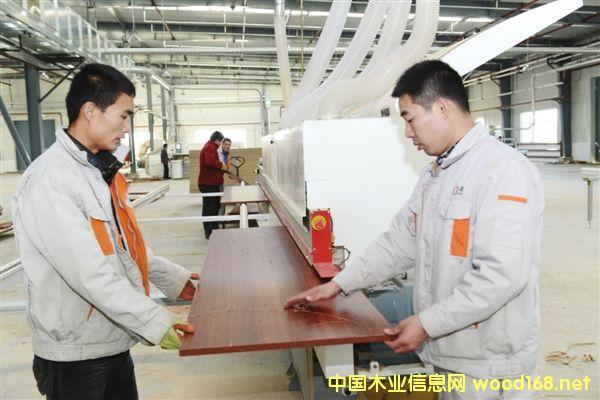 乌兰察布木材综合产业园计划实现产值2亿元