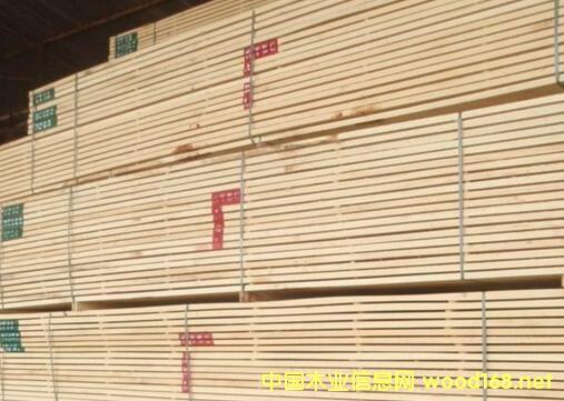非洲白木价格逐渐上涨