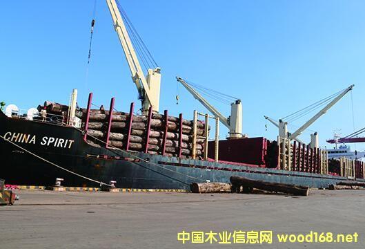 """万蓬集团""""中国精神""""木材船10000余立方米原木到港"""