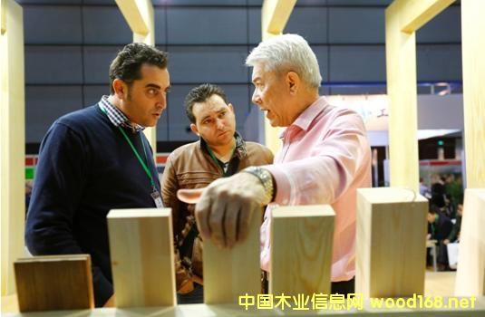 全球锯材市场:中国针叶材锯材进口量创新高
