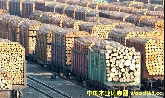 内蒙古去年进口俄罗斯木材千万立方米 超西湖蓄水量