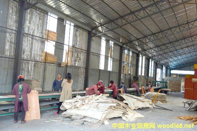 临沂费县东坤模板建筑模板生产线一角