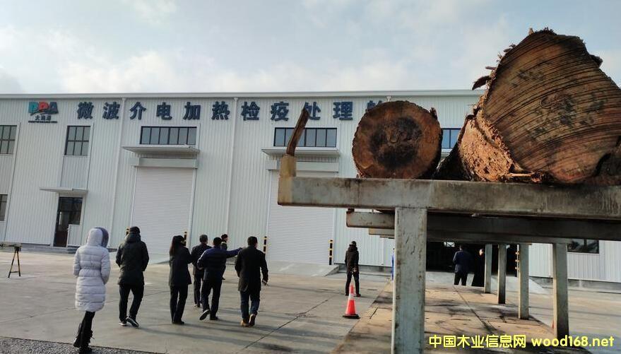 我国首创世界微波检疫处理原木技术在辽宁大窑湾投入使用