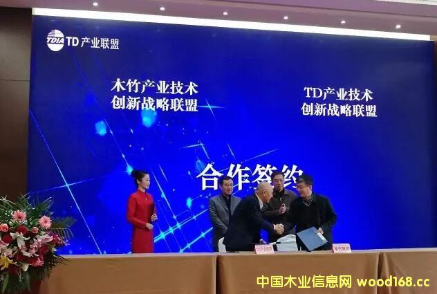 互联网+丨木竹联盟与TD联盟跨界合作