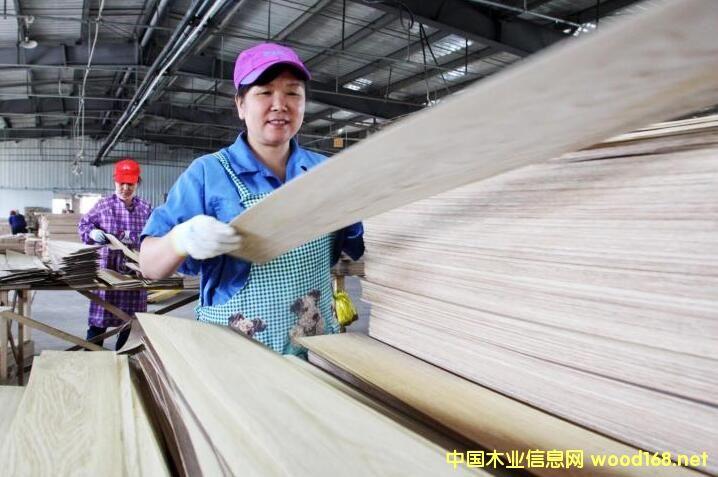 """""""木业之都""""做强进口木材加工"""