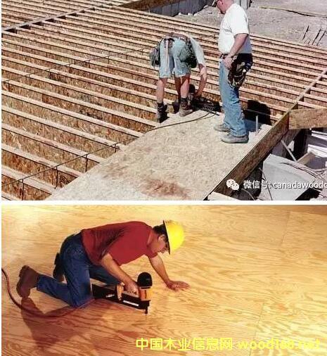 定向结构刨花板(OSB)和结构胶合板(plywood)到底哪