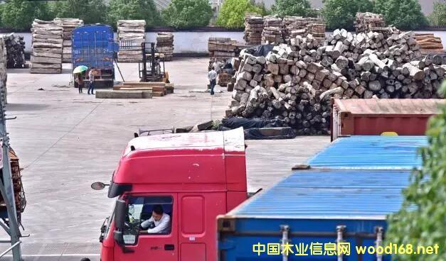 """缅甸花梨10天涨价25%!东阳红木市场再现""""疯狂的木头""""!"""
