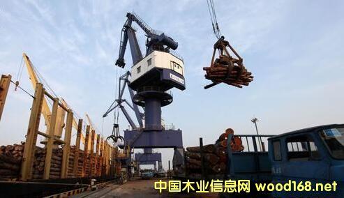 常熟港成第二大新西兰木材进口港
