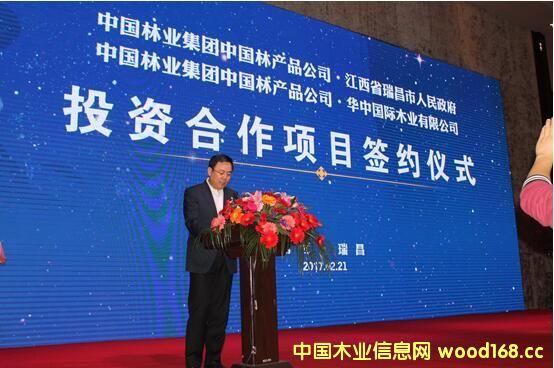 中国林业集团副总经理、中国林产品公司总经理林展