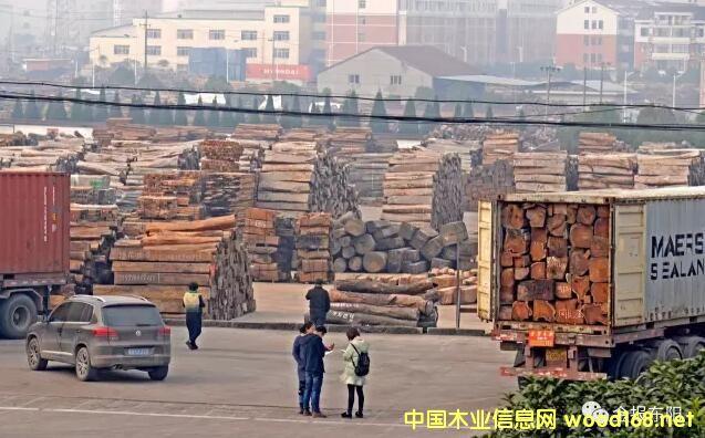 CITES新规执行 红木清关困难 东阳红木市场迎来去库存良机
