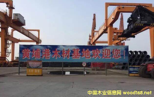 全国木材市场巡视之--黄埔港木材交易基地
