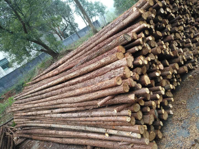 [供] 园林支撑防护  景观树支撑 小条木  绿化杆  杉木杆