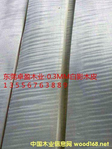 0.3白影木皮、白影木皮饰面板