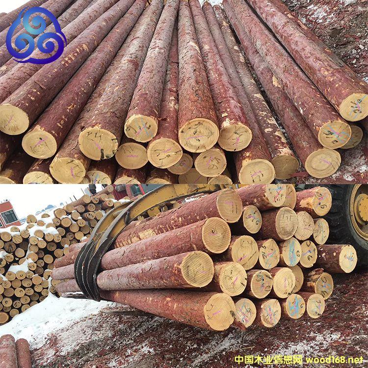 落叶松黄花松檩条木桩