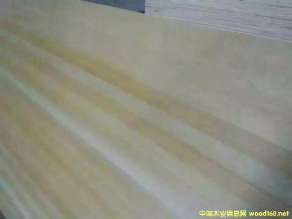 樟子松木皮