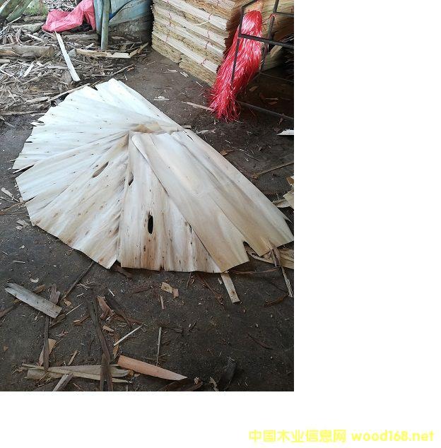 桉木单板皮子中板