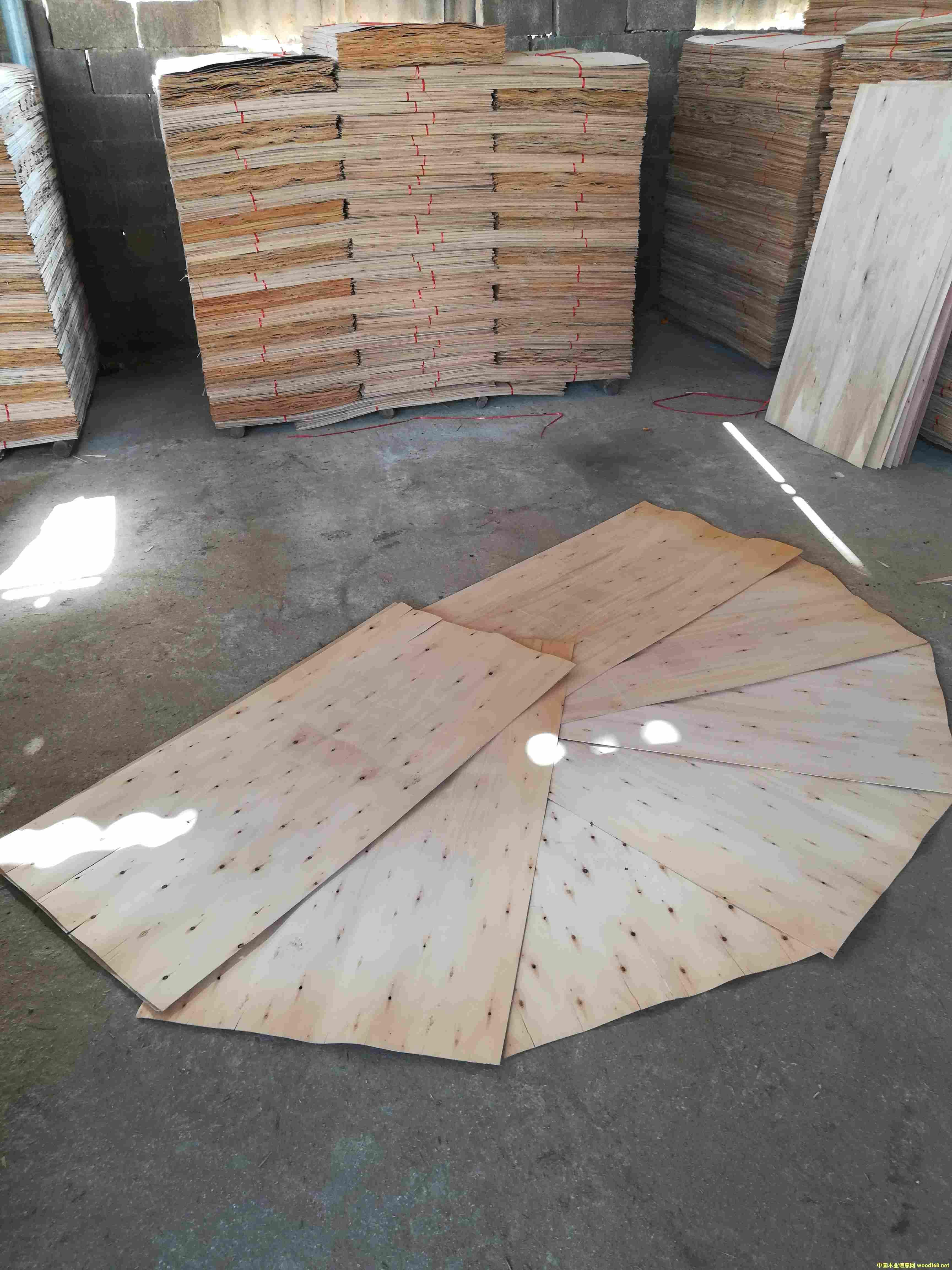 桉木单板皮子一级板