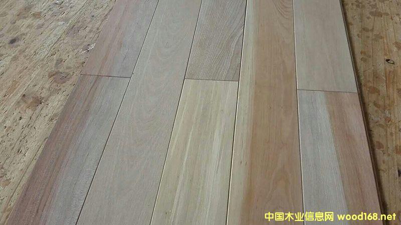 桦木地板坯料