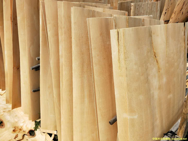 橡胶木板皮