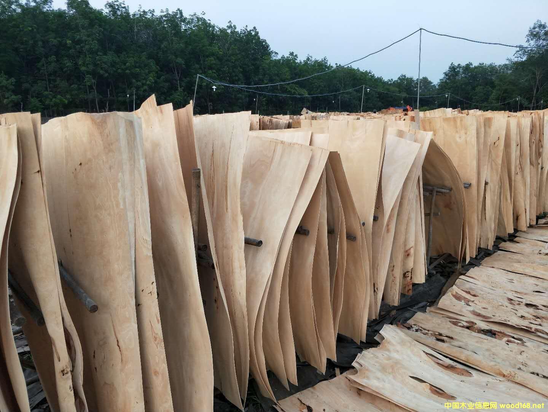 越南橡胶木板皮代装柜