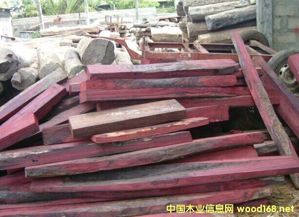 出售进口马达加斯加大叶紫檀原木