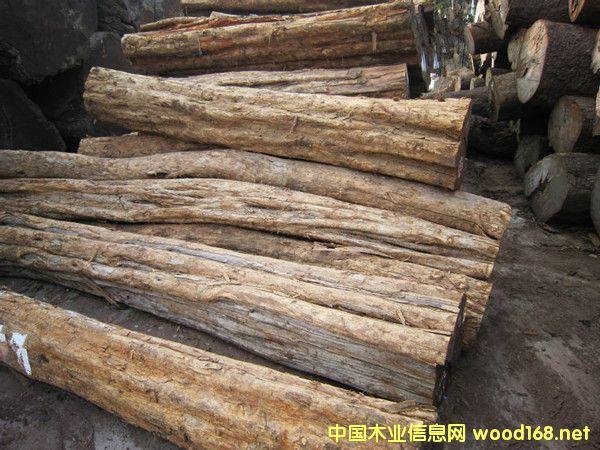出售进口莫桑比克乌木紫光檀原木