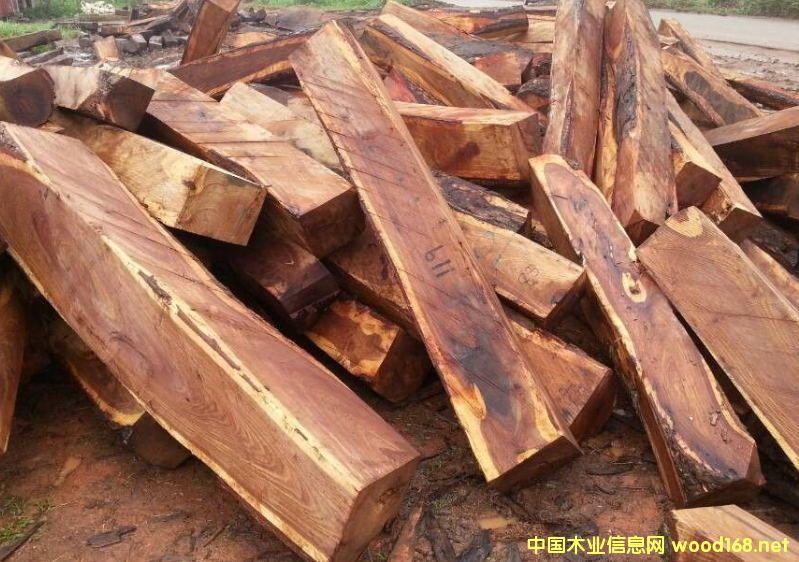 出售进口非洲紫檀木原木