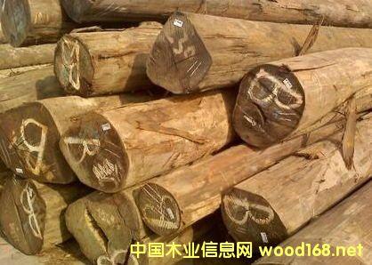 出售进口缅甸柚木原木