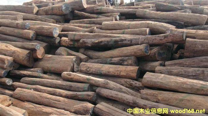 出售进口大红酸枝原木