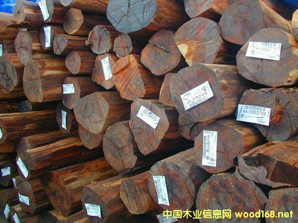 出售进口苏里南蛇纹木原木