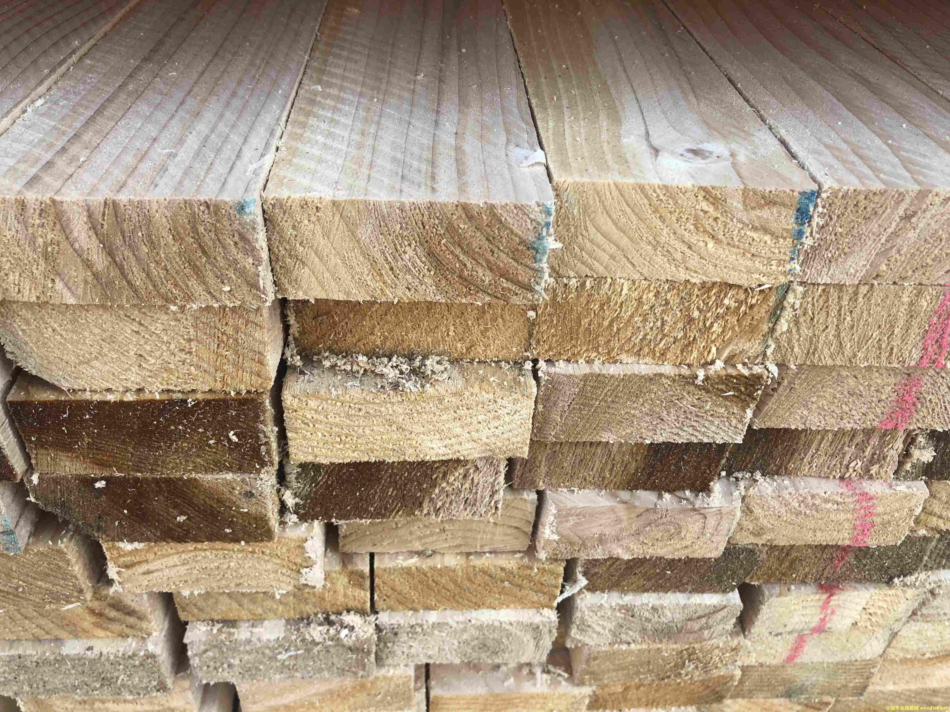 铁杉建筑木方厂家 铁杉板材批发