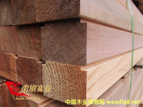 上海红雪松厂家