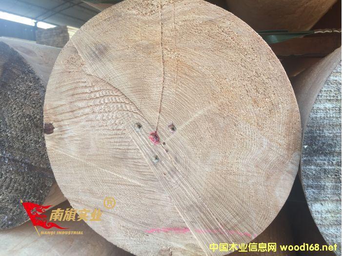 上海铁杉木方  铁杉建筑木方厂家