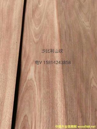 优质天然沙比利山纹木皮