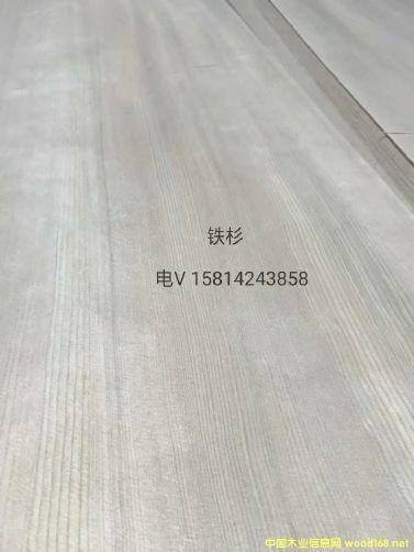 优质天然铁杉木皮