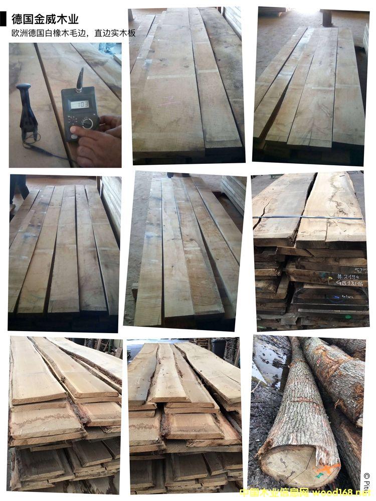 欧洲白橡毛边板 实木板的详细介绍